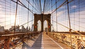 WIT: 100 Things to Do in NYC Before You Die